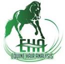 Equine Hair